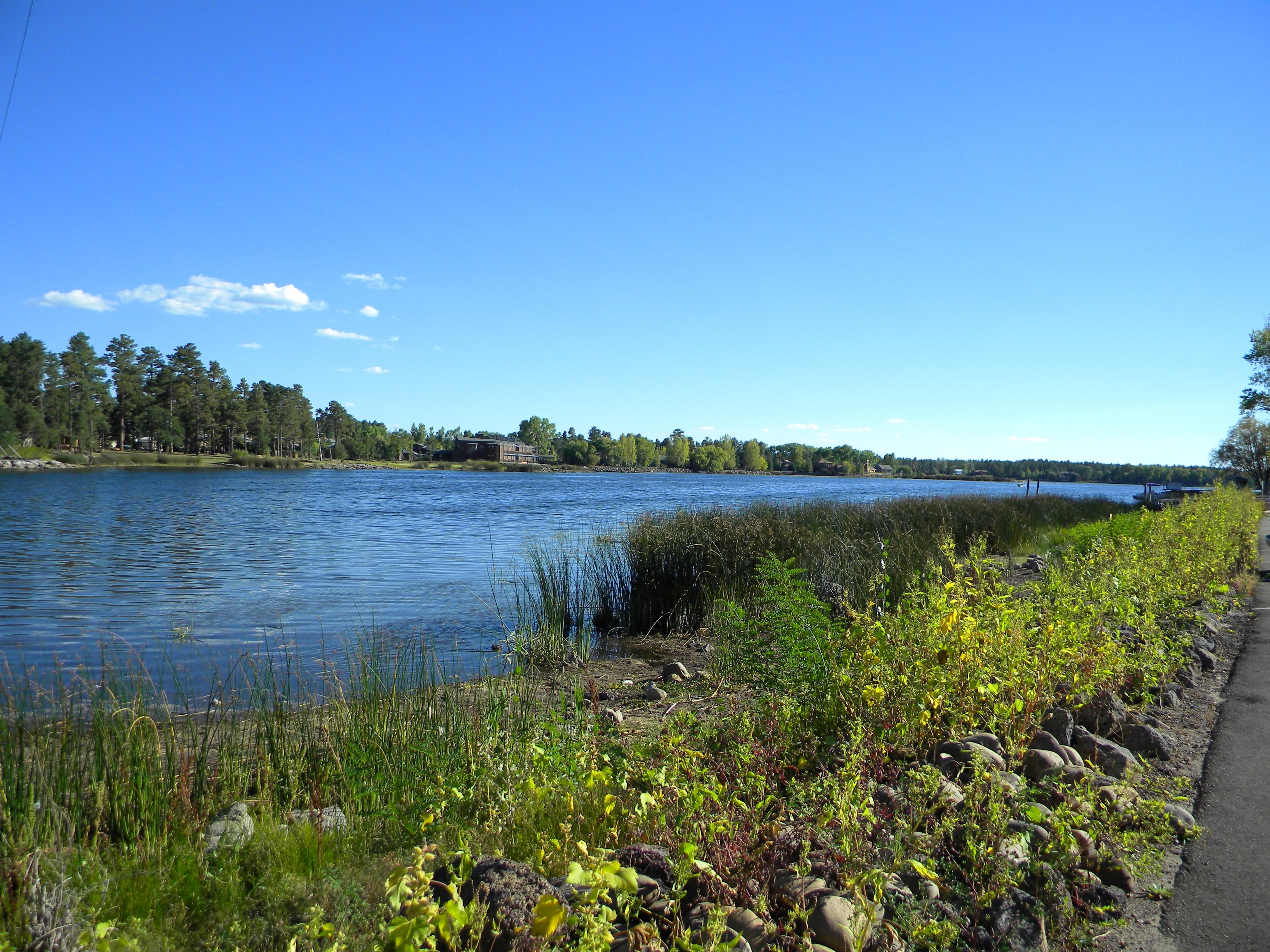 White Mountain Fishing Report | RV park in Pinetop Az